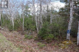 Photo 9: Lot St Catherines River Road in Port Joli: Vacant Land for sale : MLS®# 202111302