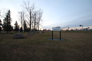 Photo 29: 4716 43 Avenue: Gibbons House for sale : MLS®# E4227537