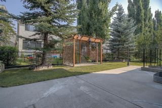 Photo 44: 271 Discovery Ridge Boulevard SW in Calgary: Discovery Ridge Detached for sale : MLS®# A1136188