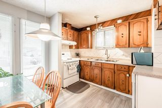 Photo 10: 6662 Temple Drive NE in Calgary: Temple Row/Townhouse for sale : MLS®# A1063811