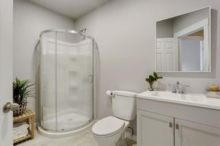 Photo 26: 414 SAGEWOOD Drive SW: Airdrie Detached for sale : MLS®# C4256648