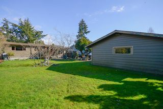 Photo 25: 4579 60B Street in Delta: Holly House for sale (Ladner)  : MLS®# R2551566