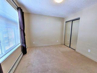 Photo 22: 438 6076 SCHONSEE Way in Edmonton: Zone 28 Condo for sale : MLS®# E4260047