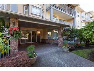 Photo 6: 200 1459 BLACKWOOD Street: White Rock Condo for sale (South Surrey White Rock)  : MLS®# R2491056