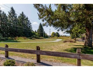 """Photo 18: 98 9525 204 Street in Langley: Walnut Grove Townhouse for sale in """"TIME"""" : MLS®# R2401291"""