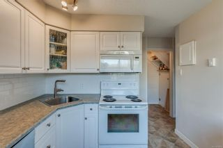 Photo 7: 5 477 Lampson St in : Es Old Esquimalt Condo for sale (Esquimalt)  : MLS®# 859012