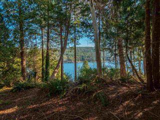 Photo 4: 7735 REDROOFFS Road in Halfmoon Bay: Halfmn Bay Secret Cv Redroofs House for sale (Sunshine Coast)  : MLS®# R2564522