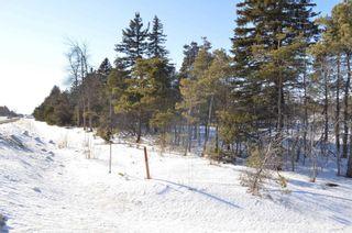Photo 6: Pt Lt 1, Con 9/9th Line in Amaranth: Rural Amaranth Property for sale : MLS®# X5128220
