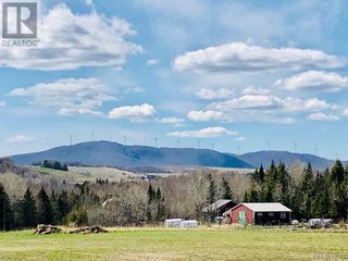 Photo 6: 799 Back Greenfield Road in Summerfield: Agriculture for sale : MLS®# NB060241