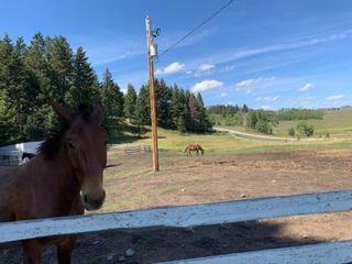 Photo 29: For Sale: 17 Burmis Mountain Estates, Rural Pincher Creek No. 9, M.D. of, T0K 0C0 - A1141426