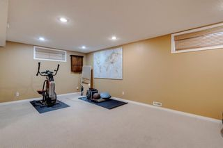 Photo 31: 104 Copperfield Crescent SE in Calgary: Copperfield Detached for sale : MLS®# A1110254