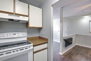 Photo 13: 411 333 Garry Crescent NE in Calgary: Greenview Apartment for sale : MLS®# A1088693