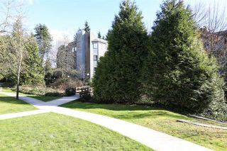 Photo 11: 509 9890 MANCHESTER Drive in Burnaby: Cariboo Condo for sale (Burnaby North)  : MLS®# R2191933