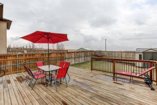 Photo 27: 53 EVANSDALE Landing NW in Calgary: Evanston Detached for sale : MLS®# A1104806