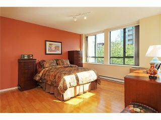 """Photo 9: 301 1088 QUEBEC Street in Vancouver: Mount Pleasant VE Condo for sale in """"VICEROY"""" (Vancouver East)  : MLS®# V974256"""