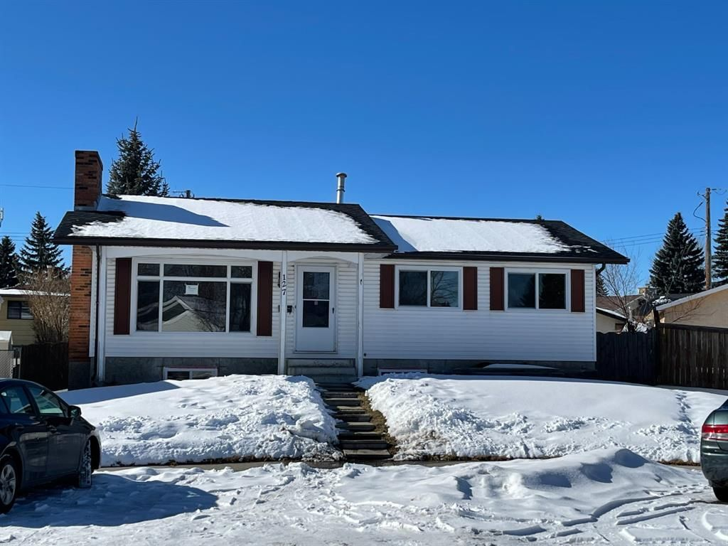 Main Photo: 127 MADDOCK Way NE in Calgary: Marlborough Park Detached for sale : MLS®# A1072674