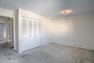 Photo 21: 132 Mardale Crescent NE in Calgary: Marlborough Detached for sale : MLS®# A1146772