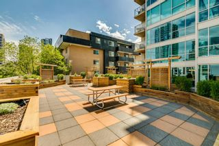 Photo 29: 209 188 15 Avenue SW in Calgary: Beltline Apartment for sale : MLS®# A1119413