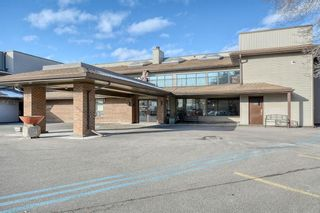Photo 1: 201 2425 90 Avenue SW in Calgary: Palliser Apartment for sale : MLS®# A1052664