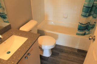 Photo 13: 2216 10 Prestwick Bay SE in Calgary: McKenzie Towne Apartment for sale : MLS®# A1101175