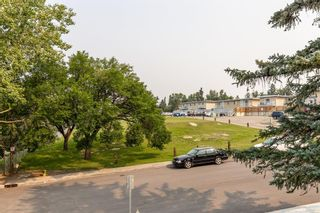 Photo 20: 5 1603 Mcgonigal Drive NE in Calgary: Mayland Heights Row/Townhouse for sale : MLS®# A1141533