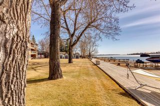 Photo 46: 117 East Chestermere: Chestermere Semi Detached for sale : MLS®# A1091135