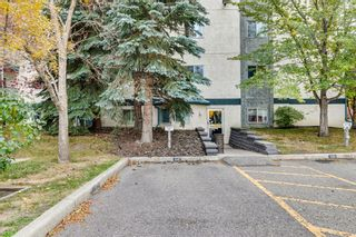 Photo 25: #106 10 Dover Point SE in Calgary: Dover Apartment for sale : MLS®# A1152097