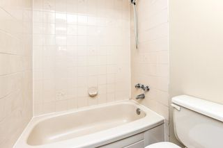 Photo 16: 22442 125 Avenue in Maple Ridge: West Central House for sale : MLS®# R2598995