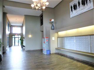 Photo 3: 312 1520 HAMMOND Gate in Edmonton: Zone 58 Condo for sale : MLS®# E4234650