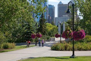 Photo 44: 302C 500 EAU CLAIRE Avenue SW in Calgary: Eau Claire Apartment for sale : MLS®# C4215554