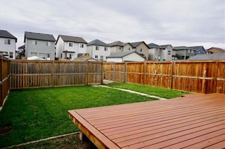 Photo 17: 163 SILVERADO PLAINS Circle SW in Calgary: Silverado Detached for sale : MLS®# C4243826