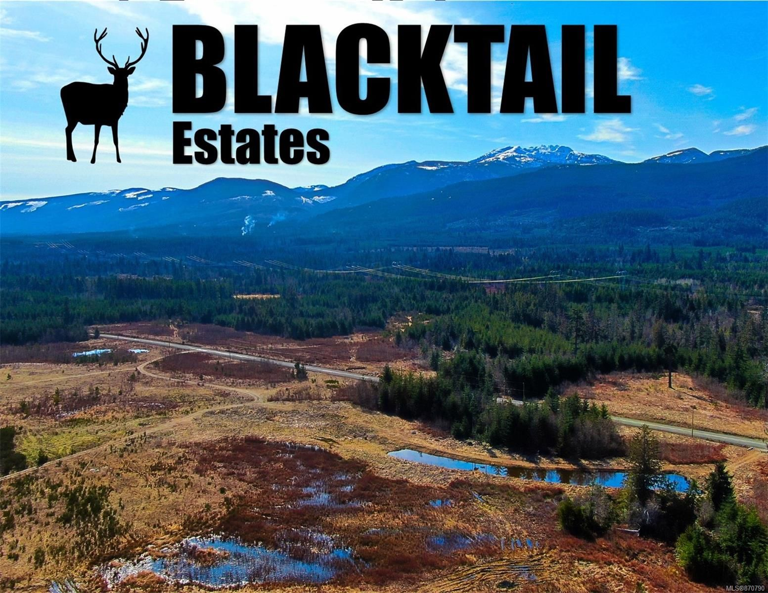 Main Photo: Lot 8 Blacktail Rd in : PQ Qualicum North Land for sale (Parksville/Qualicum)  : MLS®# 870790