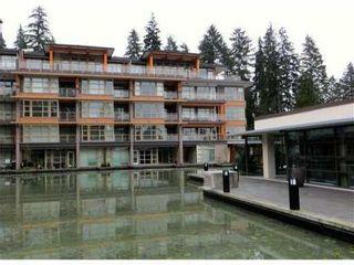Photo 20: 506 3606 ALDERCREST Drive in North Vancouver: Roche Point Condo for sale : MLS®# R2057276