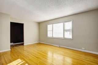 Photo 8: 2032 50 Avenue SW in Calgary: Altadore Detached for sale : MLS®# A1059605