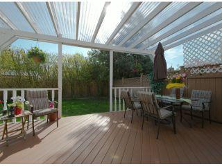 """Photo 10: 6936 134 ST in Surrey: West Newton 1/2 Duplex for sale in """"Bentley"""" : MLS®# F1309630"""