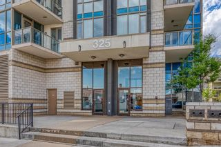 Photo 2: 208 325 3 Street SE in Calgary: Downtown East Village Apartment for sale : MLS®# A1116069