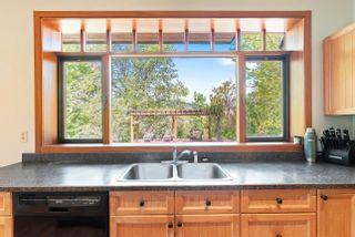 Photo 43: 3960 Northeast 20 Street in Salmon Arm: UPPER RAVEN House for sale (NE Salmon Arm)  : MLS®# 10205011