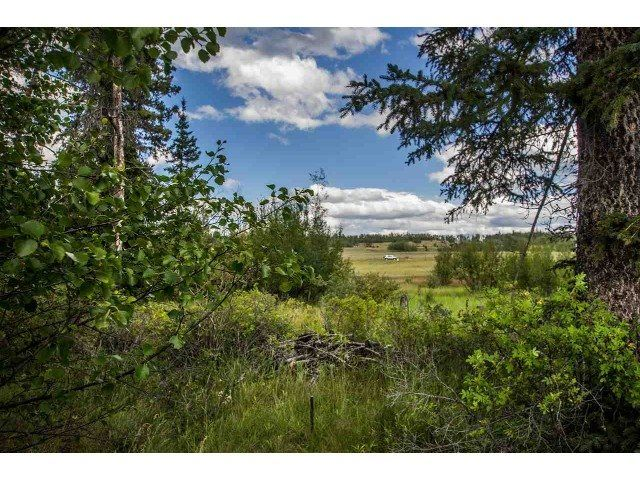Photo 4: Photos: 1888 Marriot Road in Big Bar: Land for sale (100 Mile House (Zone 10))  : MLS®# 141373