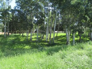 Photo 17: 4137 Township Road  350: Rural Red Deer County Detached for sale : MLS®# A1127298