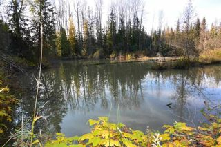 """Photo 19: 161 HELEN LAKE Road: Hazelton Land for sale in """"KISPIOX VALLEY"""" (Smithers And Area (Zone 54))  : MLS®# R2355392"""