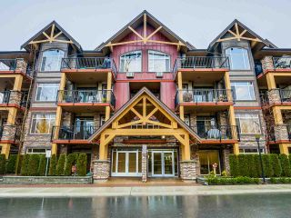 """Photo 1: 109 8328 207A Street in Langley: Willoughby Heights Condo for sale in """"YORKSON CREEK"""" : MLS®# R2023319"""