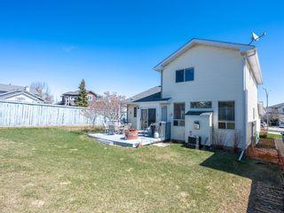 Photo 30: 113 Macewan Park View NW in Calgary: MacEwan Glen Detached for sale : MLS®# A1100392