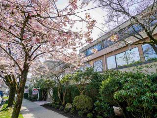 """Photo 3: 1 1214 W 7TH Avenue in Vancouver: Fairview VW Townhouse for sale in """"MARVISTA COURTS"""" (Vancouver West)  : MLS®# R2560085"""