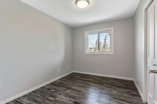 Photo 23: 72 MAITLAND Green NE in Calgary: Marlborough Park Detached for sale : MLS®# C4275960
