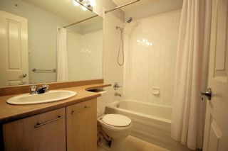"""Photo 10: 76 20540 66 Avenue in Langley: Willoughby Heights Townhouse for sale in """"Amberleigh"""" : MLS®# R2390320"""