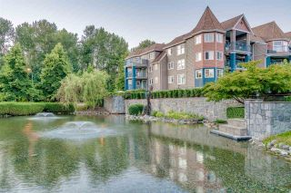 """Photo 4: 215 1200 EASTWOOD Street in Coquitlam: North Coquitlam Condo for sale in """"LAKESIDE TARRACE"""" : MLS®# R2186277"""