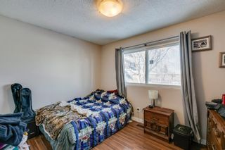 Photo 4: 168 Dover Meadow Close SE in Calgary: Dover Detached for sale : MLS®# A1082428