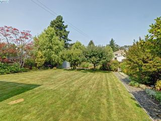Photo 18: 1290 Camrose Cres in VICTORIA: SE Cedar Hill House for sale (Saanich East)  : MLS®# 794232