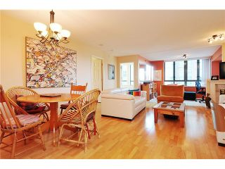 """Photo 5: 301 1088 QUEBEC Street in Vancouver: Mount Pleasant VE Condo for sale in """"VICEROY"""" (Vancouver East)  : MLS®# V974256"""