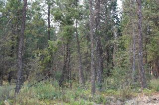 Photo 2: Lot 50 COPPER POINT WAY in Windermere: Vacant Land for sale : MLS®# 2460137
